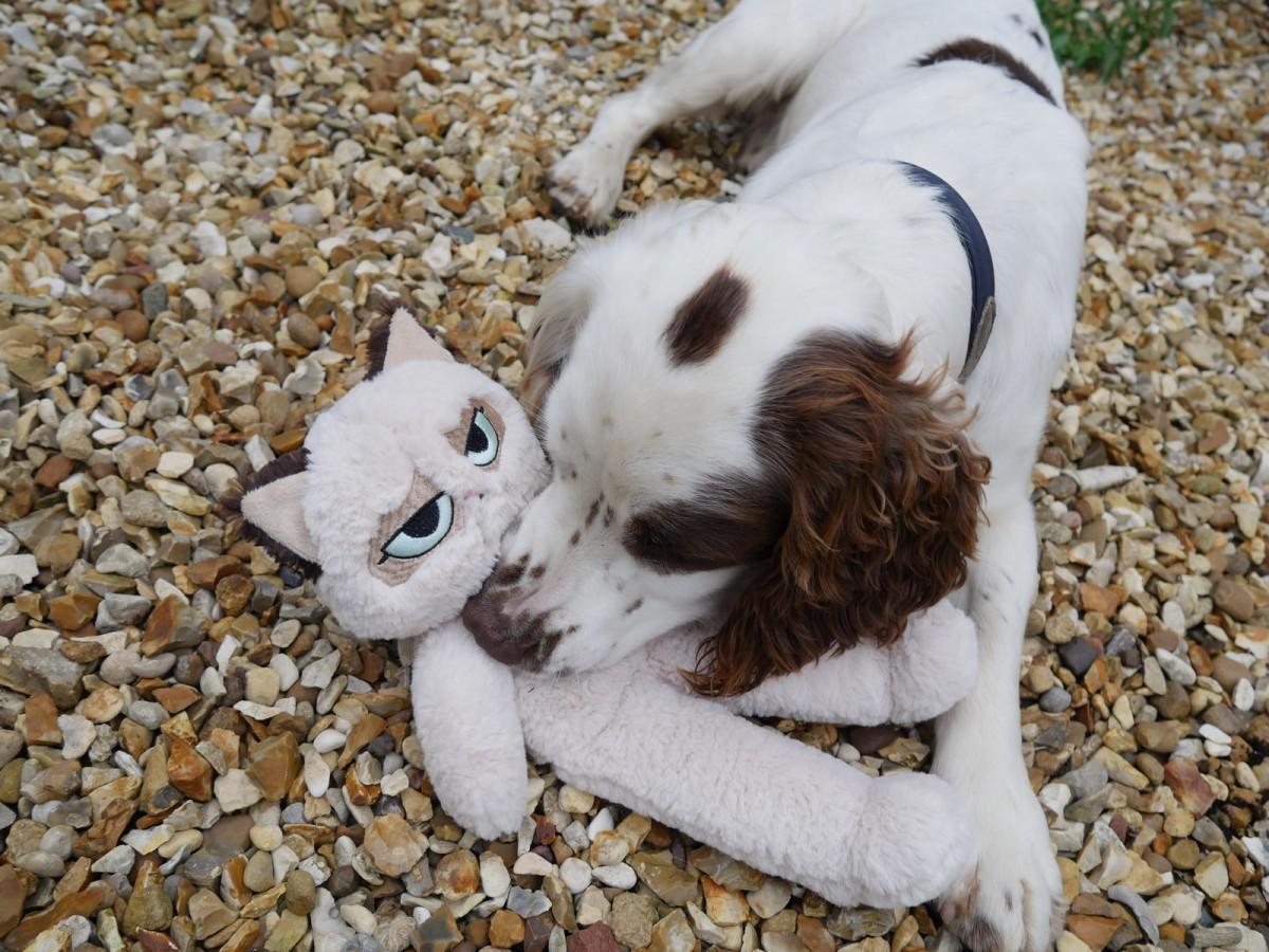 """Игрушка для собак мягкая  ROSEWOOD """"Сердитый кот Флоппи"""", бежевый, 38х20х7,5см"""