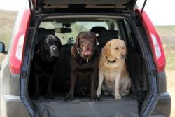 Автогамак в багажник S